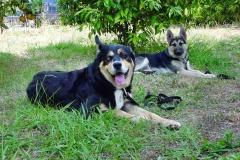 Bud & Vicky